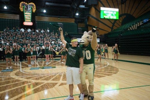 Moby Arena court