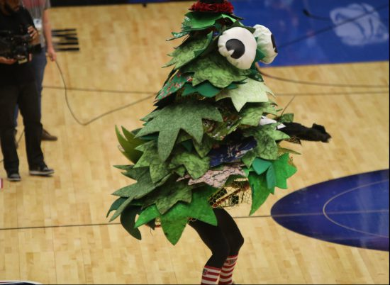 Stanford Cardinals tree mascot