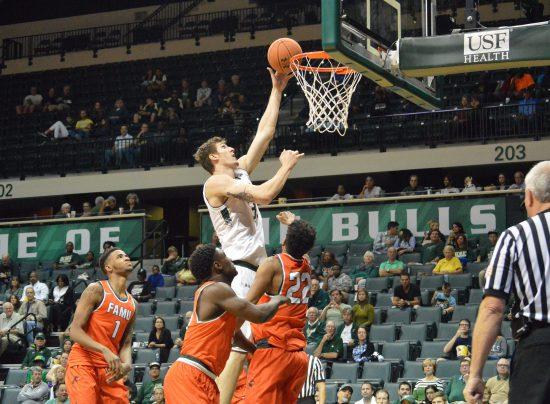 USF Bulls basketball