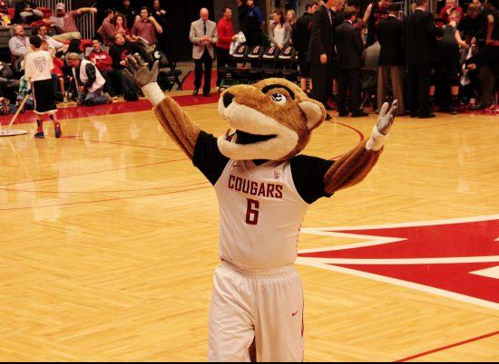 WSU Cougars Basketball Mascot