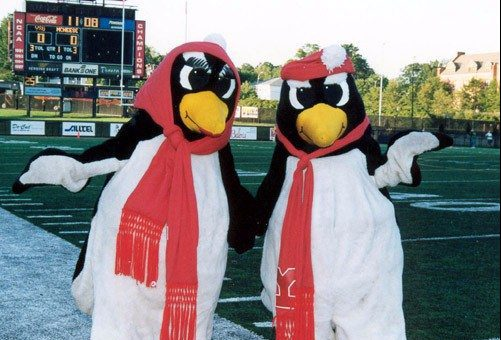 YSU Penguins mascots