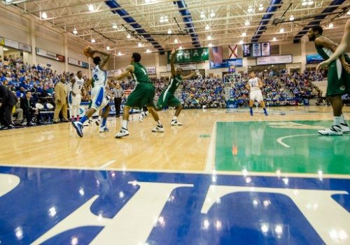 Alico Arena Banners