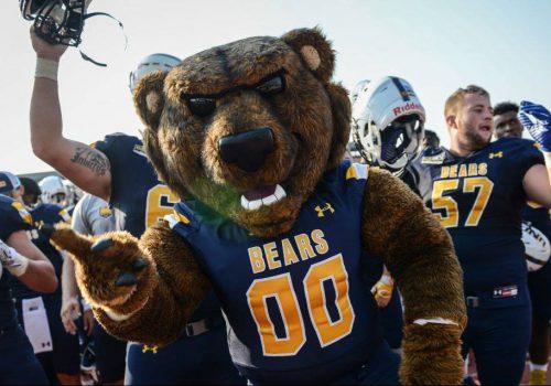 Bears fan fest