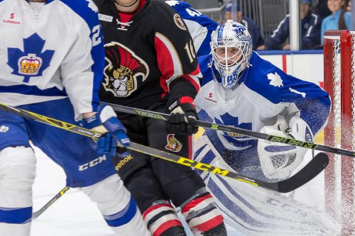 Belleville Senators vs Toronto Marlies