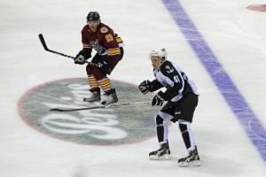 Milwaukee Admirals vs Chicago Wolves hockey game