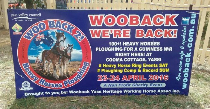 wooback sign copy