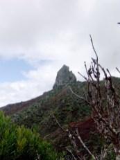 Lot, St Helena Island