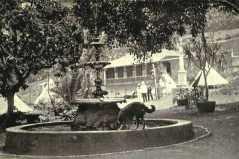 Fountain, Castle Gardens, St Helena Island