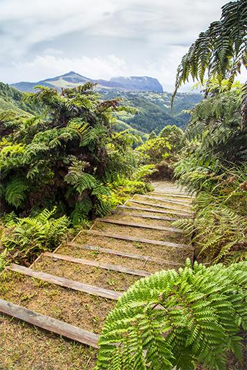 Diana's Peak, St Helena Island