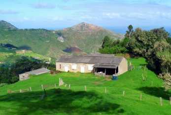 Fairyland flaxmill, St Helena Island