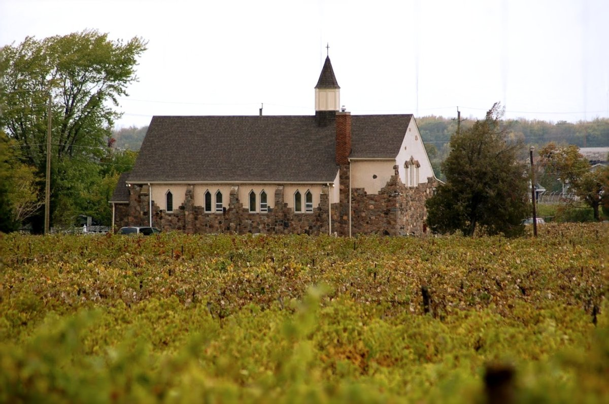 Our Church in the vines