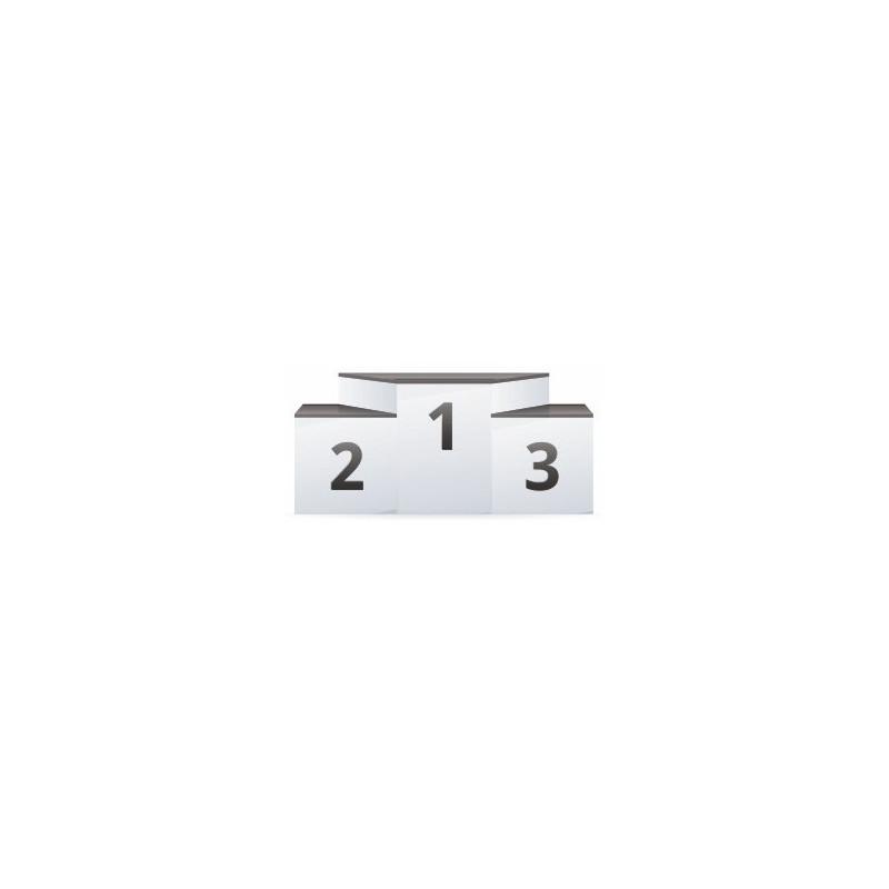 Sticker podium Voiture de course  dco garon Etiquette  Autocollant