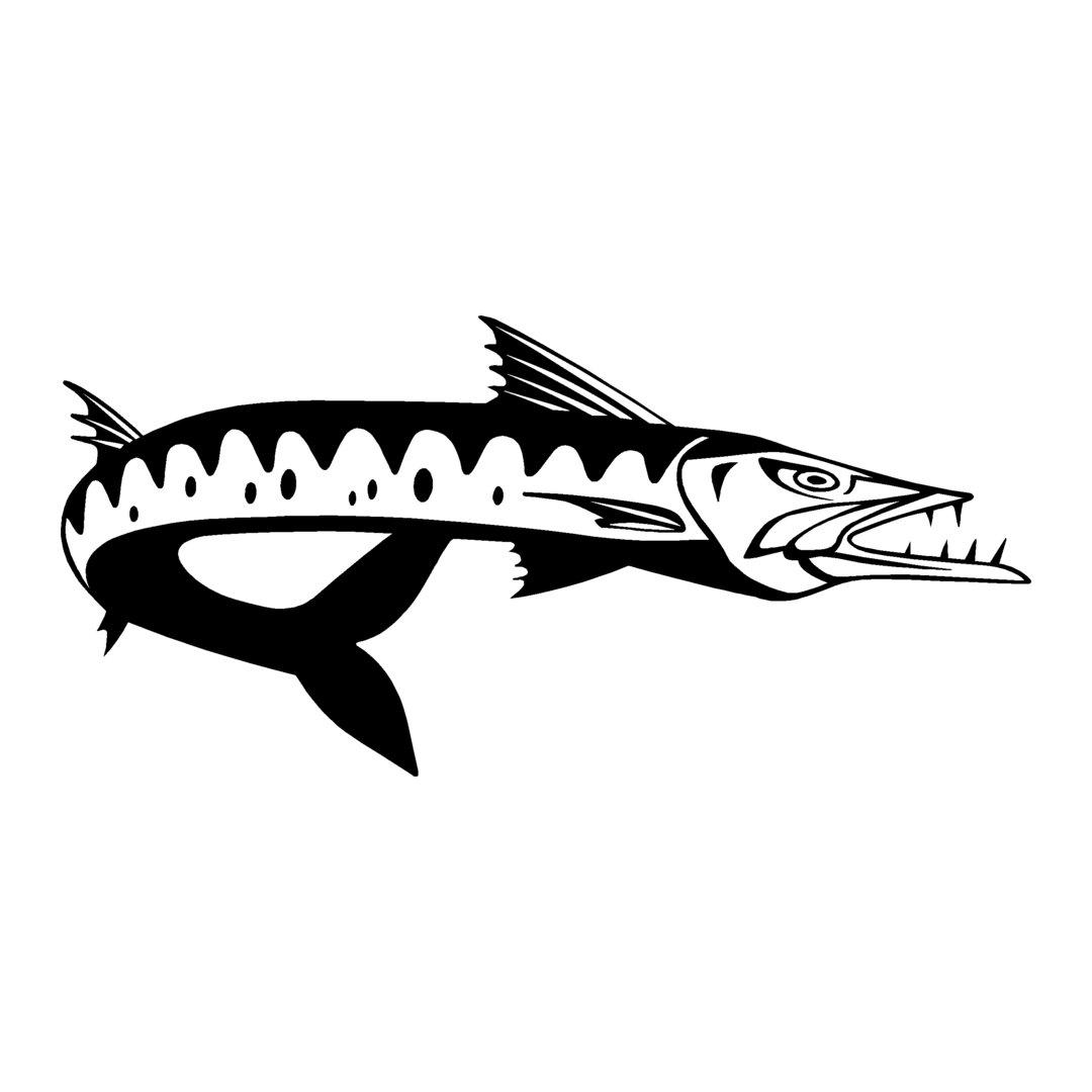 sticker BARRACUDA ref 11 bateau pêche poisson autocollant