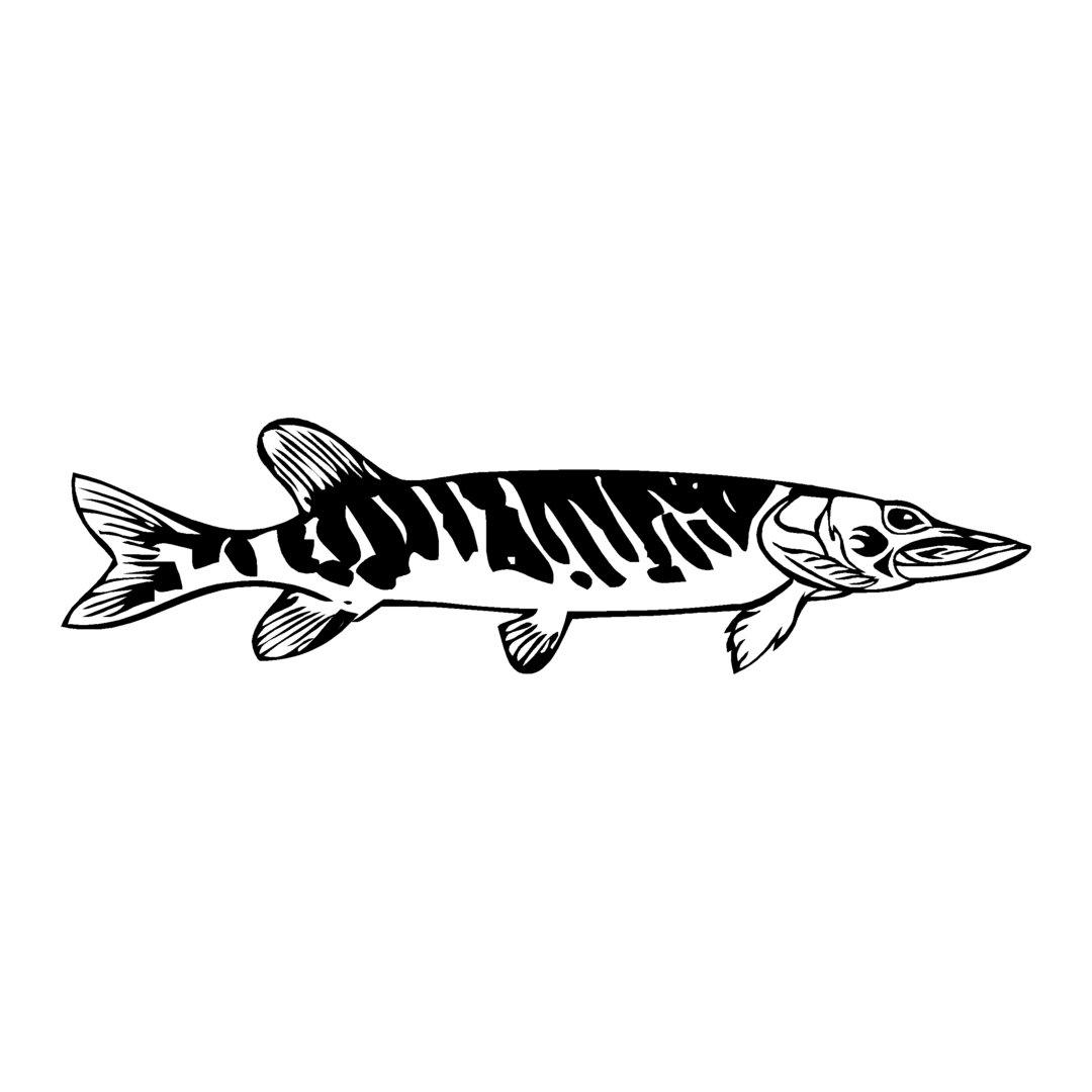 sticker BROCHET ref 13 bateau pêche poisson autocollant