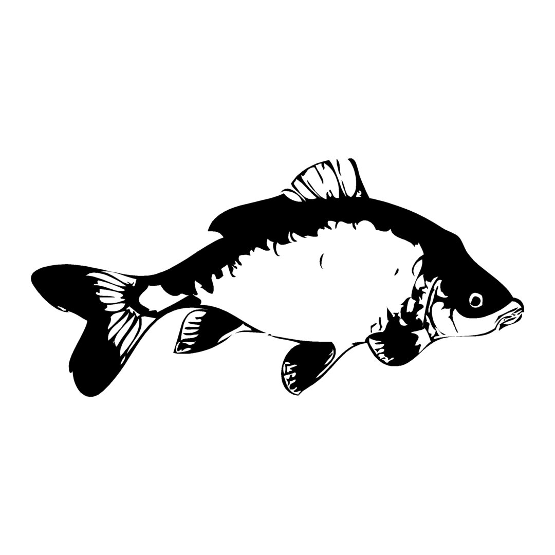 sticker CARPE ref 25 bateau pêche poisson chat autocollant