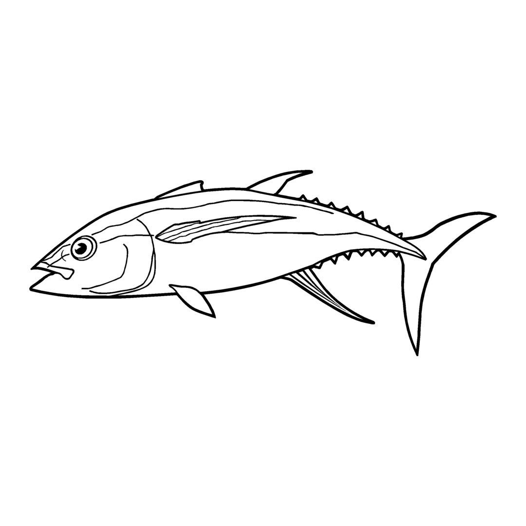 sticker THON ref 43 autocollant poisson bonite coque bateau