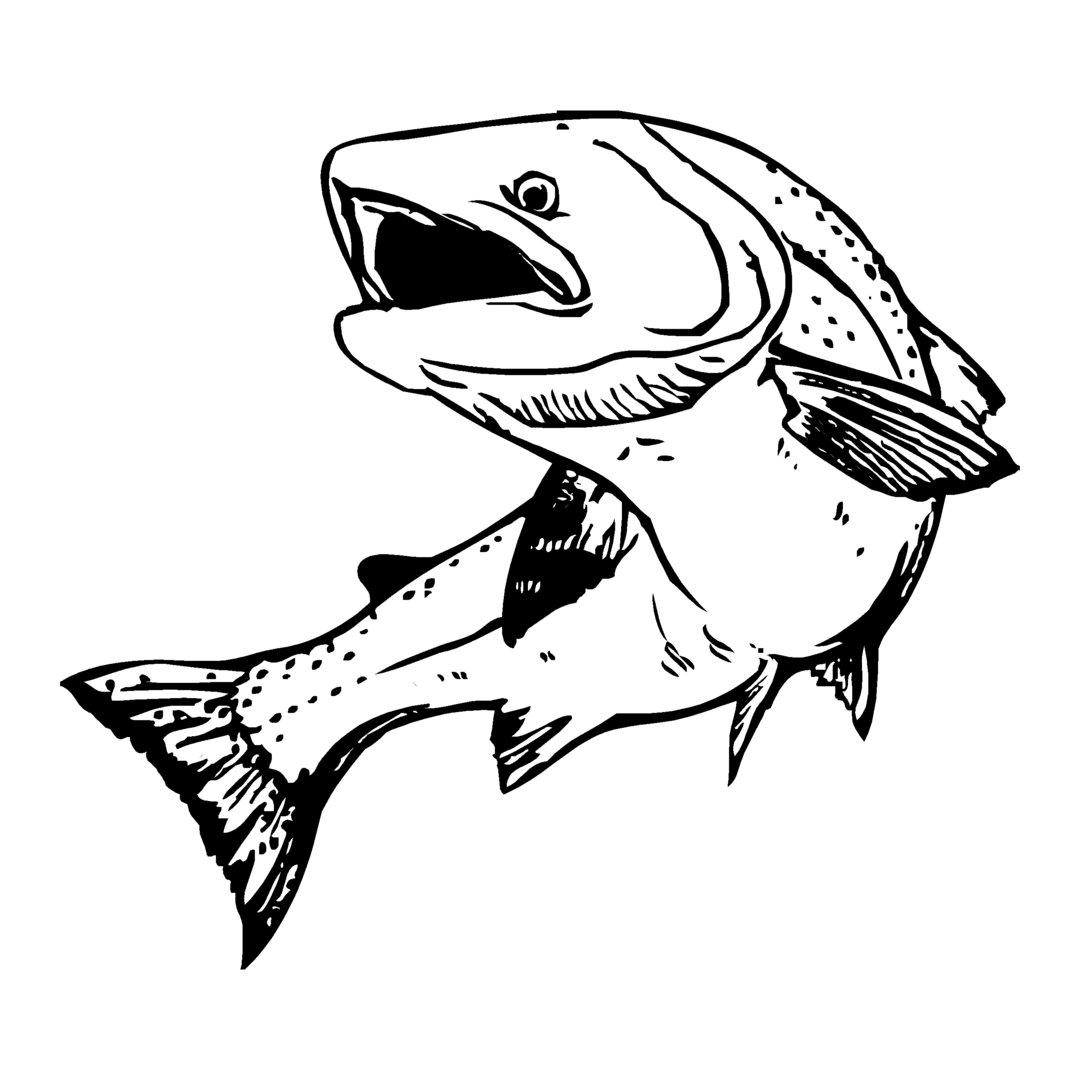 sticker TRUITE ref 57 autocollant poisson saumon coque bateau