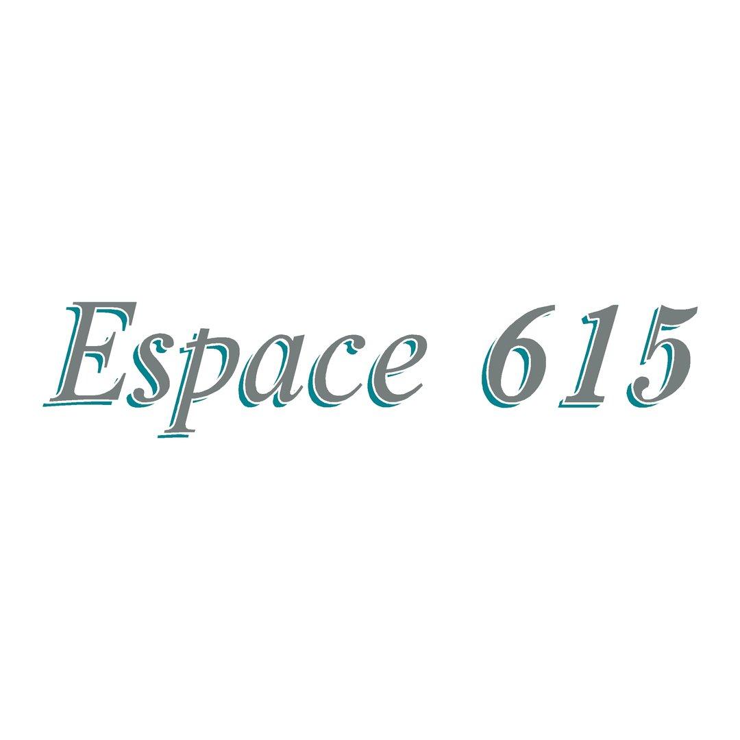 Sticker OCQUETEAU ESPACE 615 ref 45 autocollant pour coque