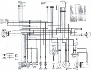 Honda 300 Fourtrax Wiring Diagram | Fuse Box And Wiring