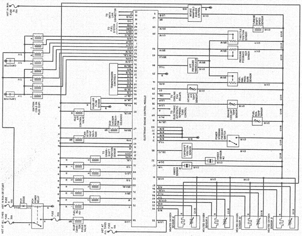1999 Yamaha Warrior 350 Wiring Diagram. Yamaha. Auto Fuse