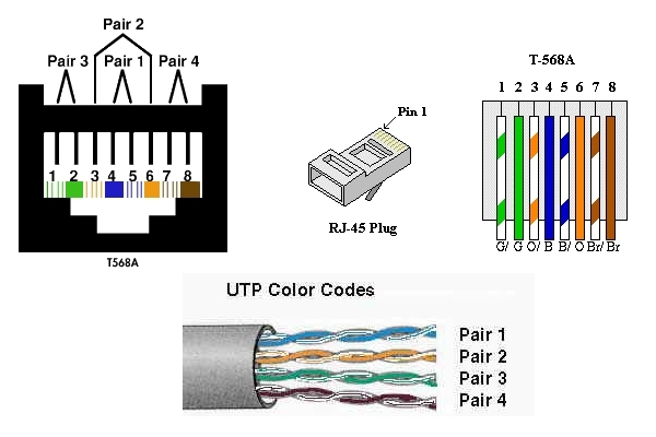 cat 5 wiring plug wiring diagram images database amornsak co in cat5 wire diagram cat 4 wiring diagram fish tank light wiring diagram \u2022 wiring  at cita.asia