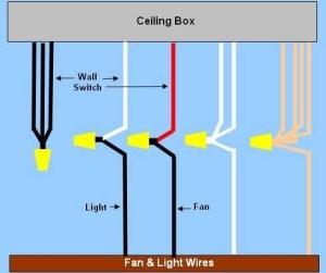 Harbor Breeze Ceiling Fan Wiring Diagram | Fuse Box And