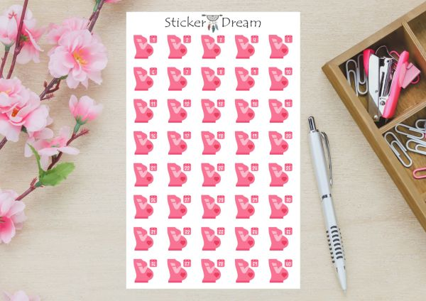 Sticker Dream - Cartela Semanas de Gravidez