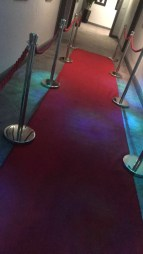 The dinner dance was a red carpet event!