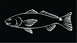 Red Fish Decal