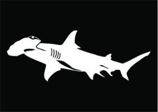 Hammerhead Decal