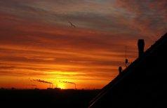 Sunrise over Gladsaxe