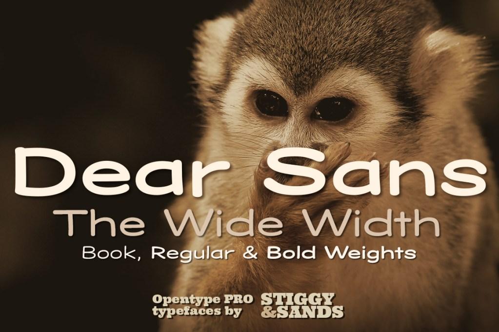 Dear Sans Wide Family Title Poster