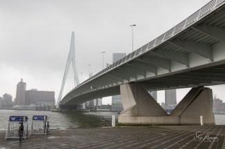 SKL_Rotterdam-1