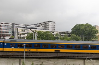 SKL_Rotterdam-49