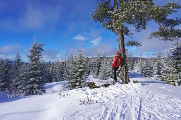 Skiløper tar en pause ved et flott utsiktspunkt ute i marke. Ryggsekk og rød anorakk.