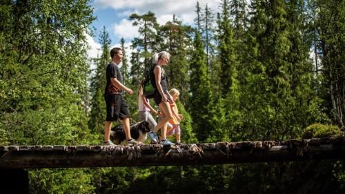 Familie med hund går over en bro