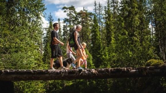 Familie på fire, to voksne og to barn går over en gammel trebro i Korpreiret i Løten.