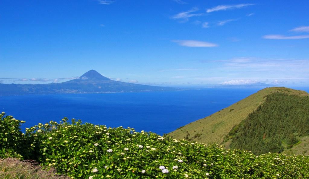 Azorene vandre blått hav
