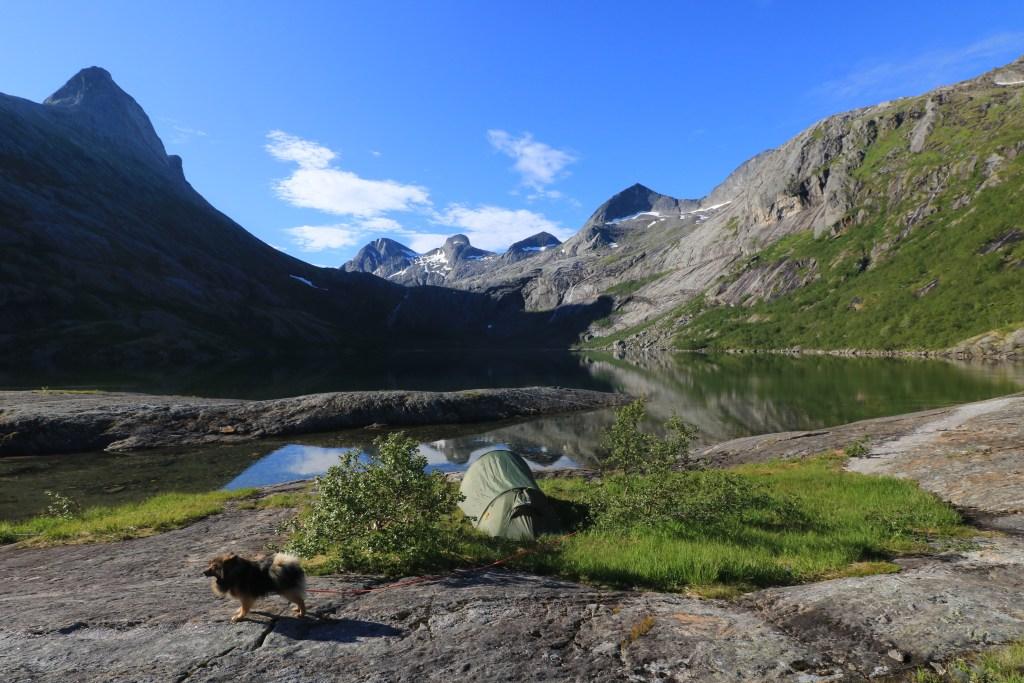 Telt ved vann med hund mektige fjell