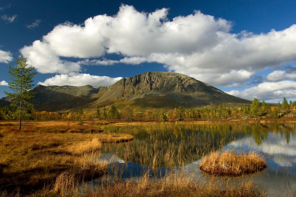Høstfarger fjell Hemsedal