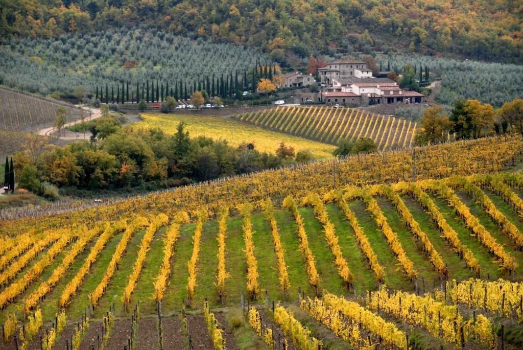 Toscana un paesaggio agrario cangiante ma vivo ed