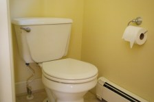 Before- Master Bath Toilet