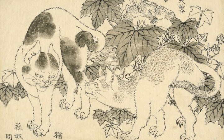 Meer dan 100 niet-gepubliceerde Hokusai-tekeningen duiken weer op in nieuwe tentoonstelling