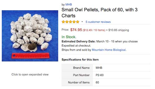 10 Most Ridiculous Things Amazon is Offering in Bulk