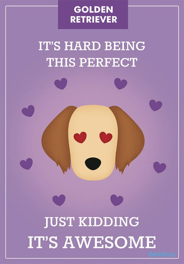 Honest Dog Breed Slogans