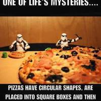 One Of Life's Mysteries