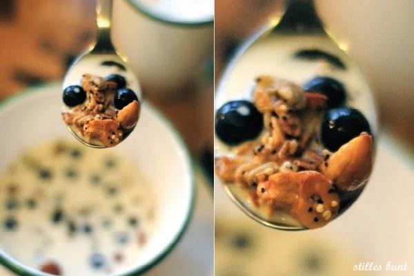 diy quinoa granola 4