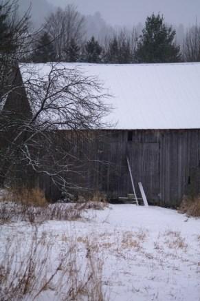 Barn-1330
