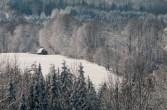 Snow-4122