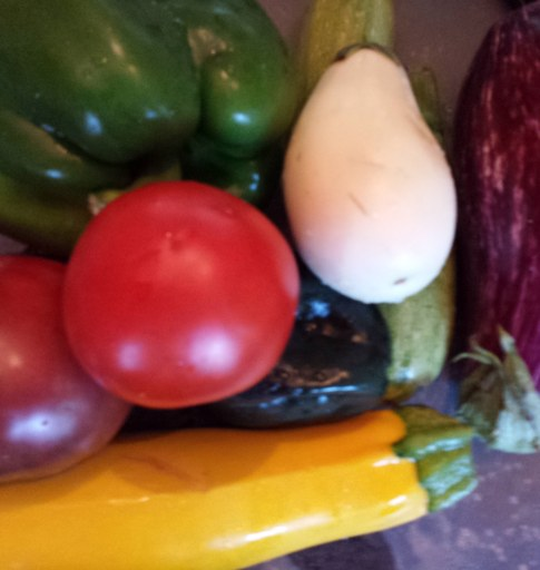 Ace peppers, Primo Red and Cherokee Purple tomatoes, Gretel and Nubia Eggplants, Golden Zucchini